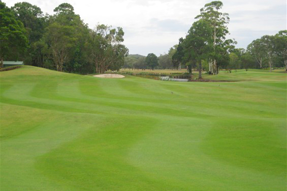 Byron-Bay-Golf-Course-Hole-10