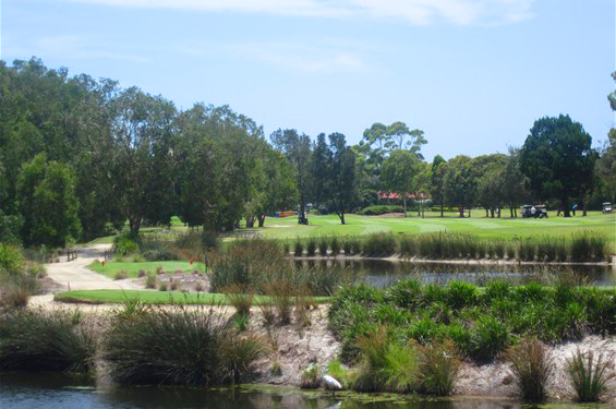 Byron-Bay-Golf-Course-Hole-11