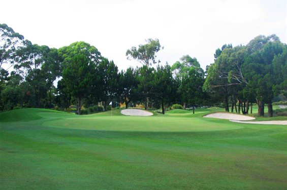 Byron-Bay-Golf-Course-Hole-13