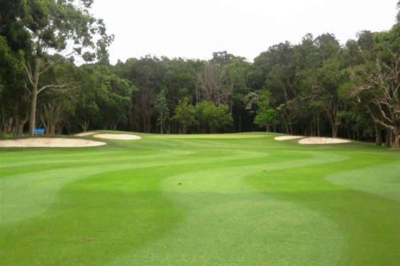 Byron-Bay-Golf-Course-Hole-15